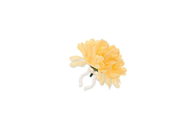 Basil Dahlia Flower gelb