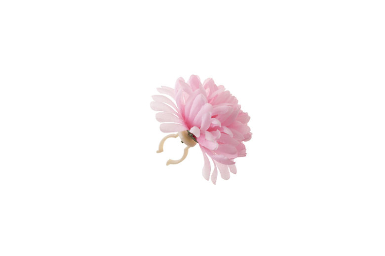 Basil Dahlia Flower rosa