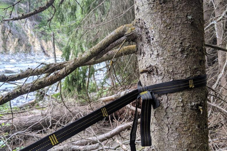 GEO – Tree Strap